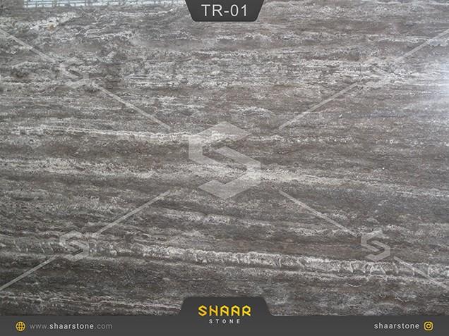 TR-01